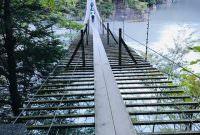 吊り橋効果は身体にもよい⁉