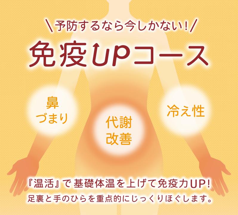 2月期間限定コース:免疫Upコース