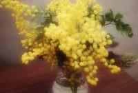 今日から三月~春の兆し💛